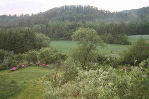 Stiersbach-Gelände